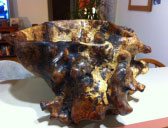 "Oak burl, rescued from the trash. 12"" deep and 18"" in diameter."